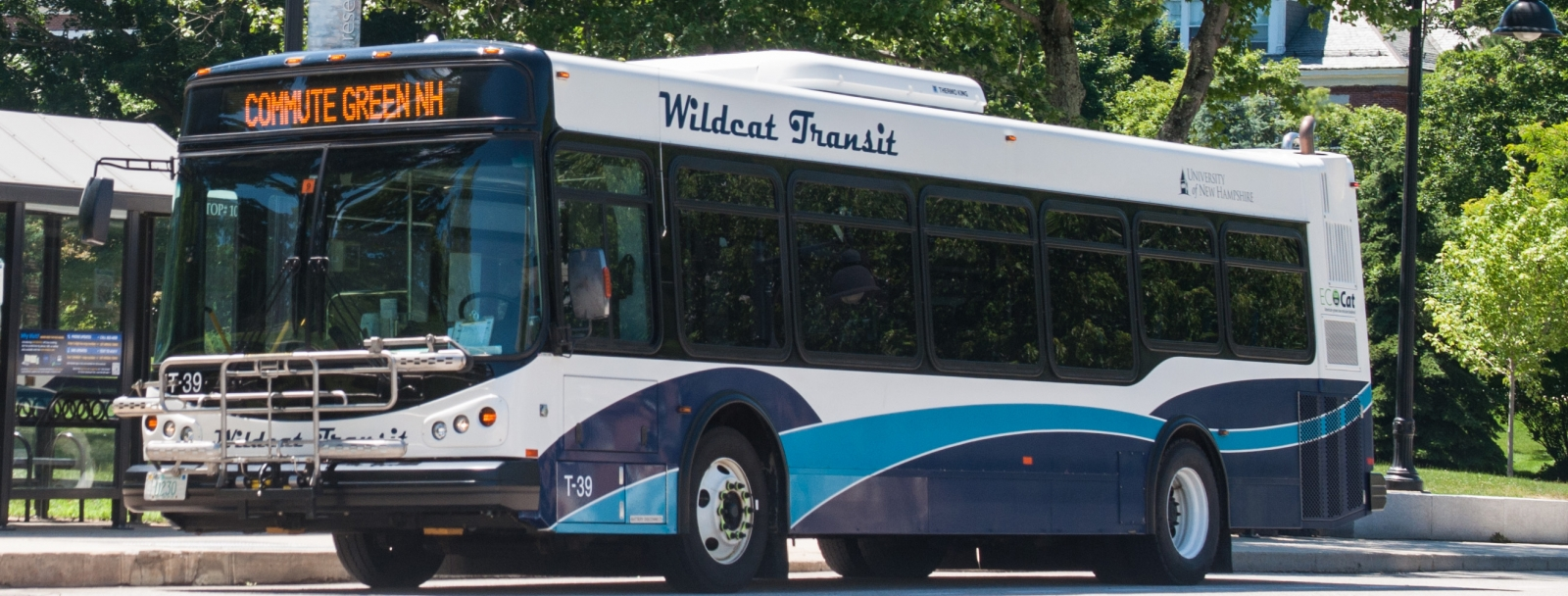 WildCat Bus transit